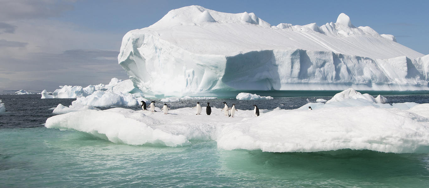 Antarctica, South Georgia and Falklands Small Ship Cruise photo showing an iceberg with Adelie Penguins