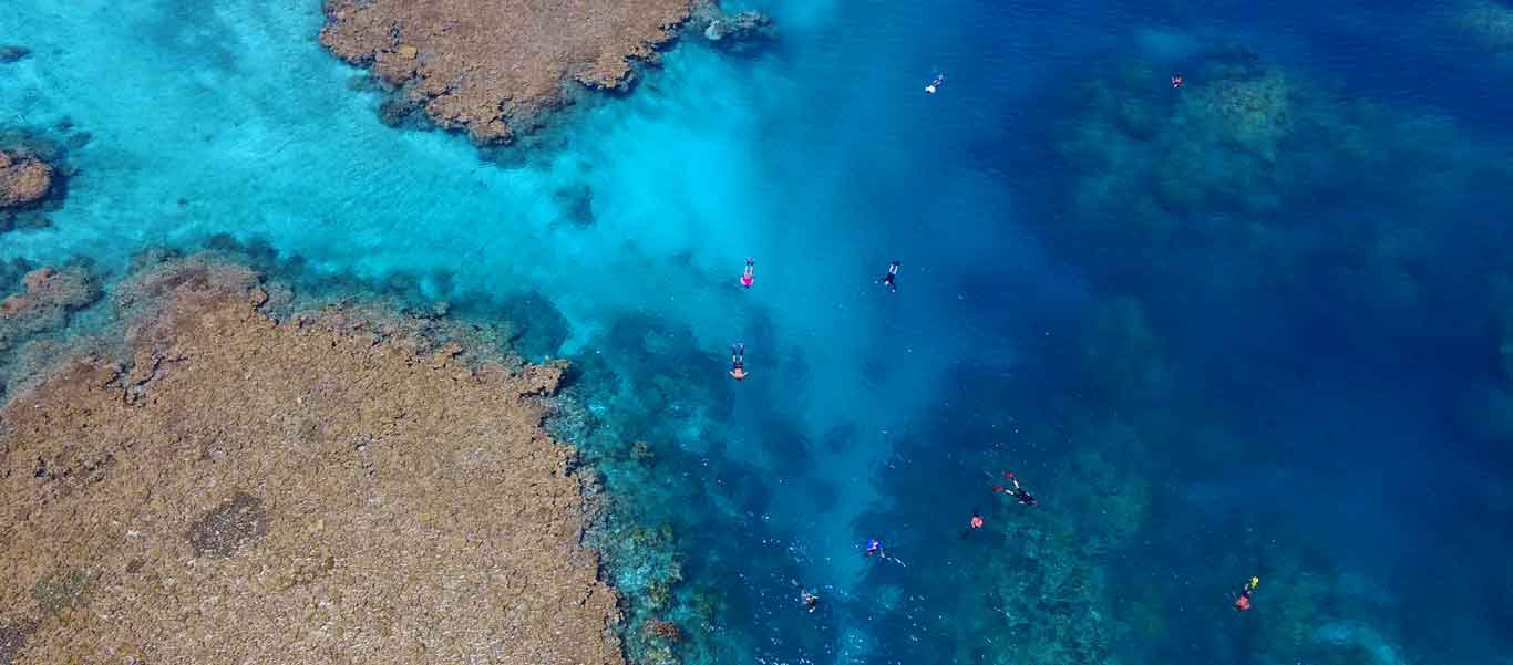 Rowley shoals photo of snorkelers