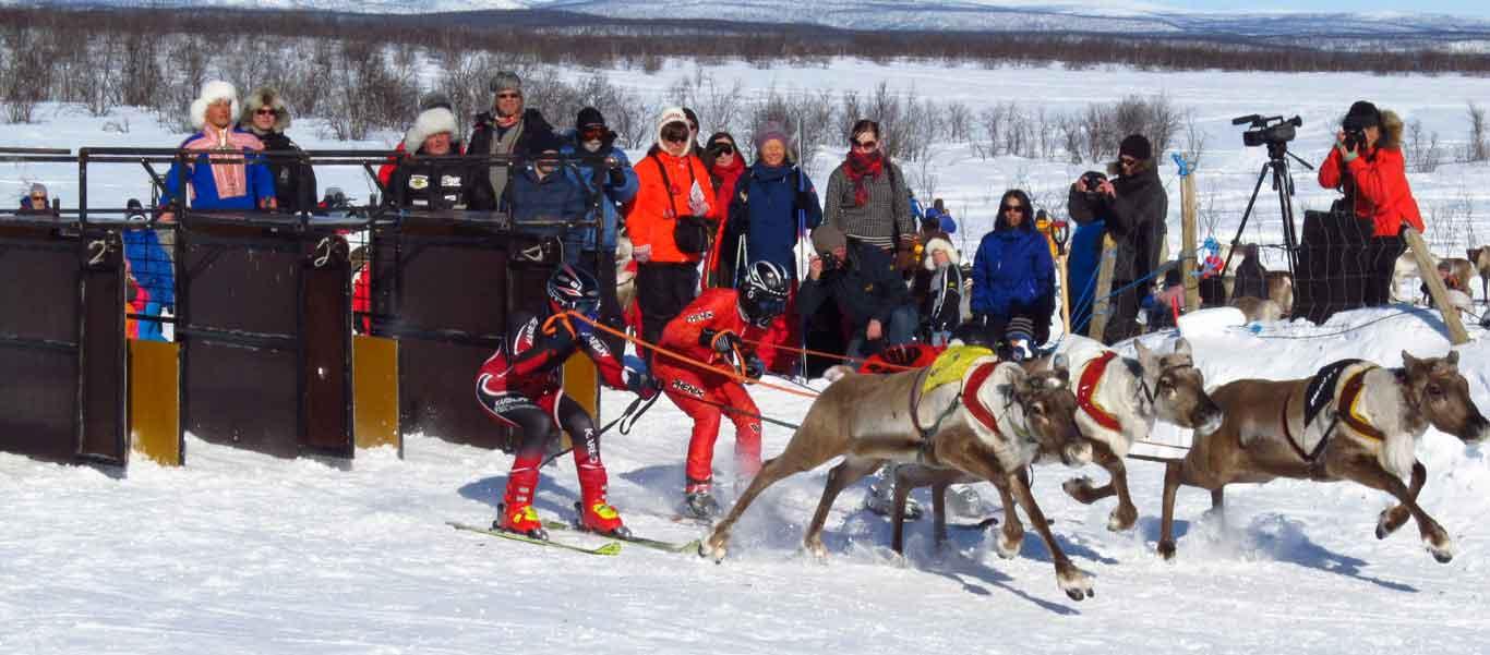 Norway adventure travel image of reindeer races in Kautokeino