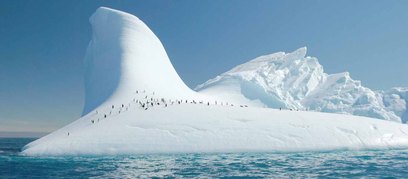 Antarctica cruise slide featuring Chinstrap Penguins on an iceberg