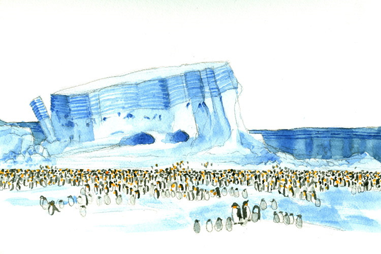 Painting by Kevin Clement of Emperor Penguins at Cape Washington, Antarctica