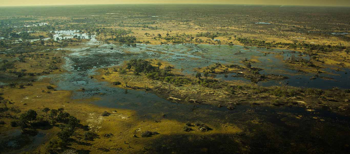 Botswana safari photo showing Okavango Delta