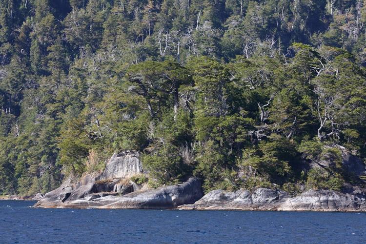 Patagonia tour image of lake crossing