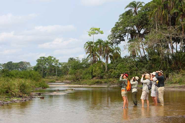 Congo gorilla tour image of birdwatchers at Lango Bai