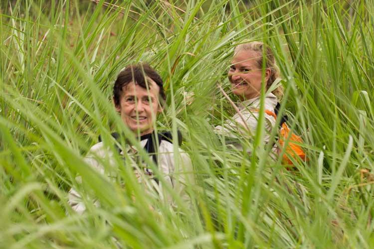 Congo safaris photo of explorers in the high grass of Lango bai