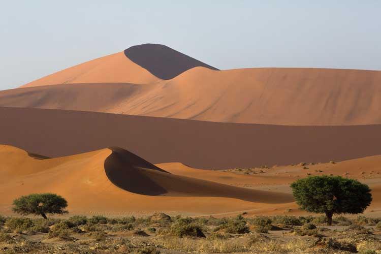 Namibia expedition image of Sossusvlei dunes in background