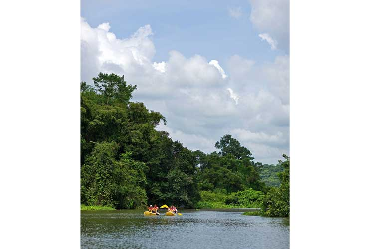 panama expedition image of Apex travelers kayaking in canal