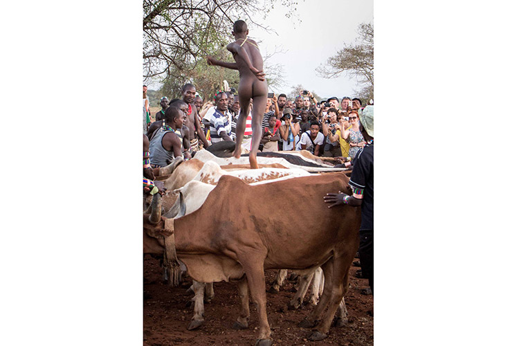 Ethiopian travel picture of man bull jumping in South Omo valley