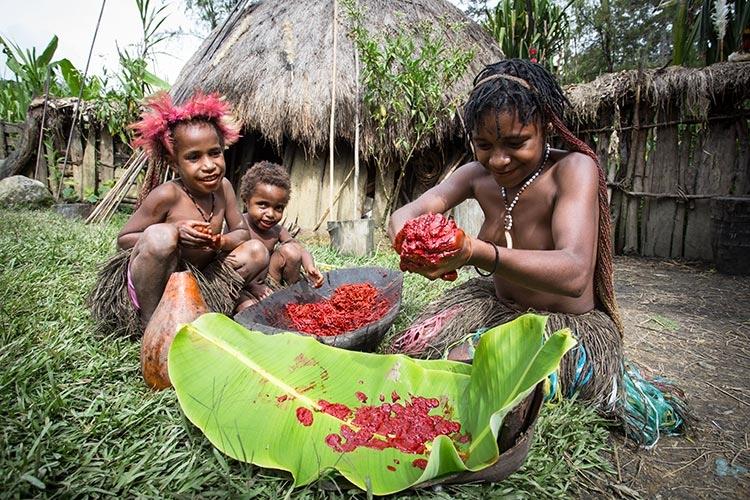 dani tribe culture photo of dani children preparing pig