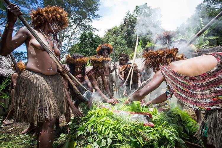 papua indonesia photo of dani tribe pig festival
