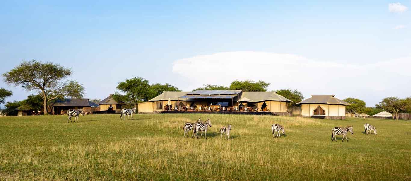 Tanzania safari tours photo of Singita Sabora Tented Camp