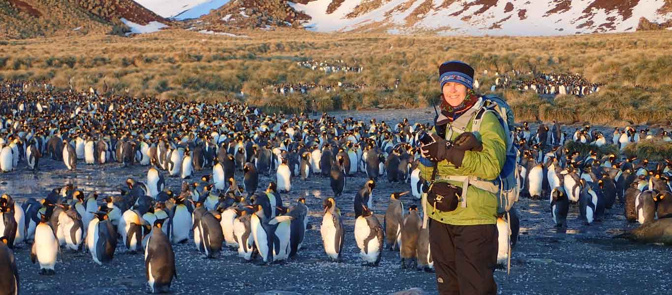 South Georgia cruise photo showing King Penguins and Apex expedition leader Ingrid Nixon