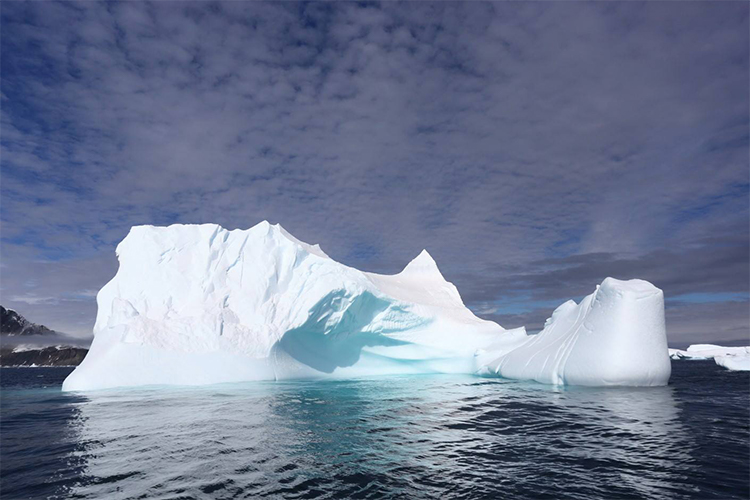 Antarctica iceberg on Antarctic Peninsula