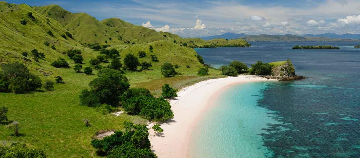 Komodo Island tours image of pink beach