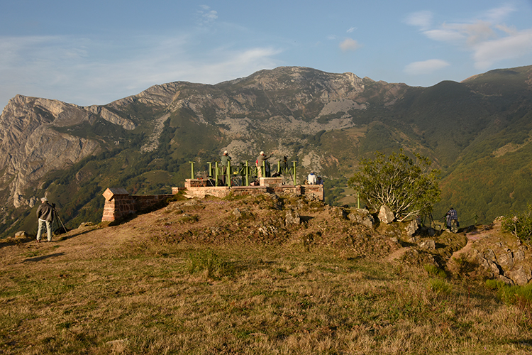 Cantabrian brown bear lookout on Spain wildlife tour