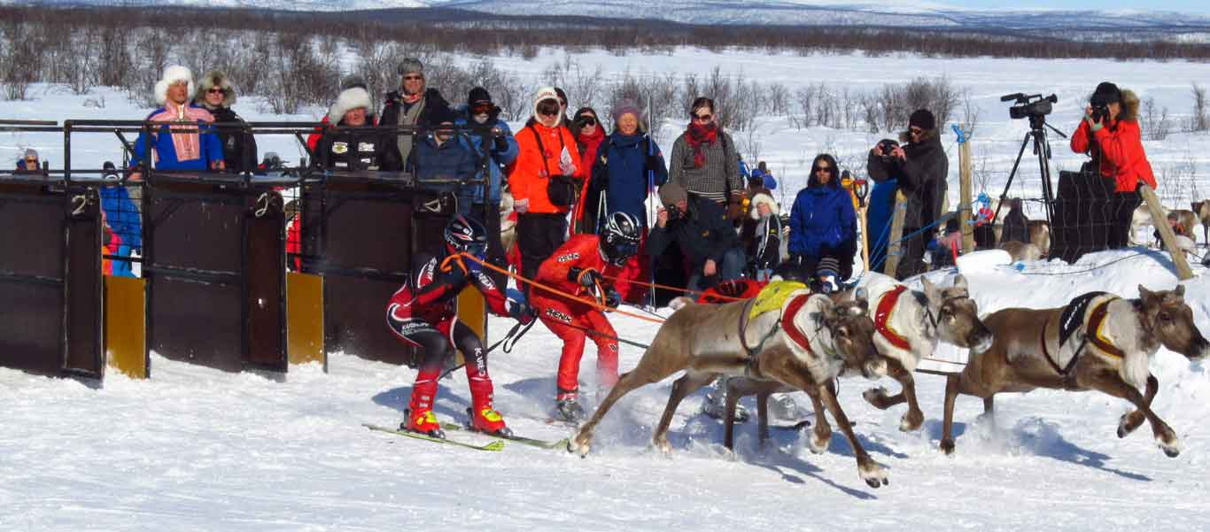 Norway adventure travel image of reindeer races in Kautokeino