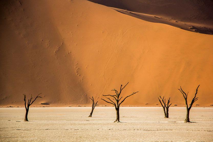 Namibia safaris image of Deadvlei, Sossusvlei