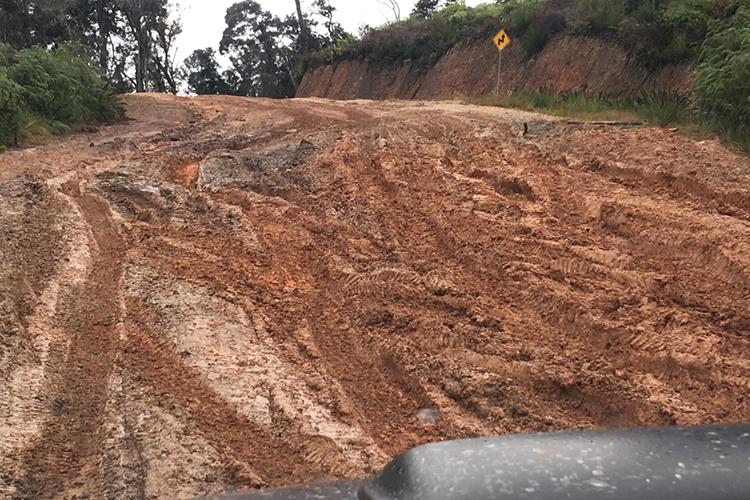Vehicle navigating dirt road on Vogelkop Peninsula in western New Guinea on 9000 bird quest