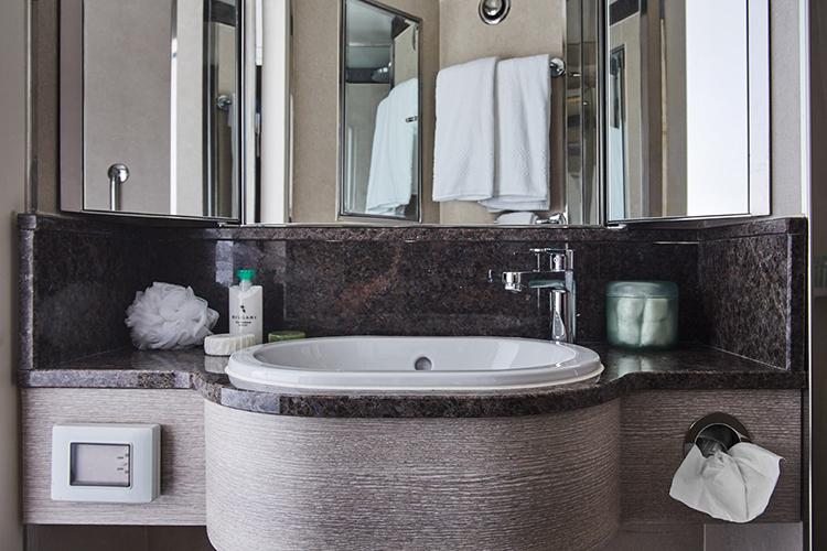 Silver explorer sink area in bathroom
