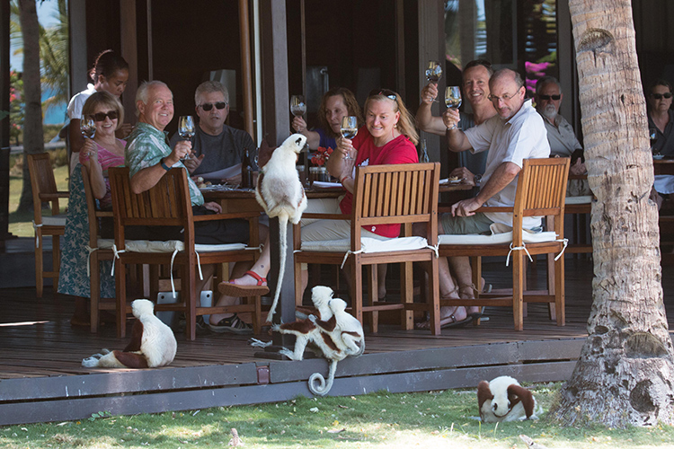 Apex Travelers relaxing around table with lemurs in Madagascar