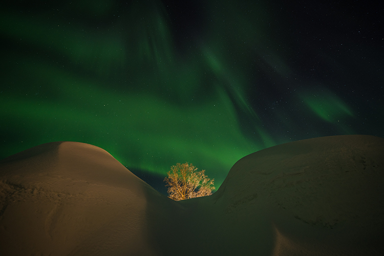 Northern Lights at Finnmark Plateau in northern Norway