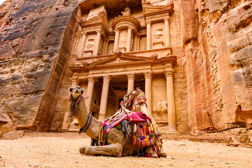 Oman & Jordan tours photo of camels at Petra